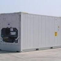 Container frigorífico usado a venda